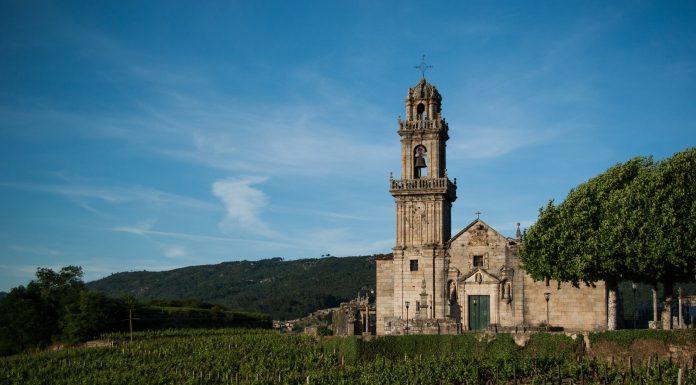 Una imagen de los viñedos del Ribeiro