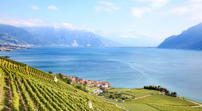 Lavaux, en Suiza, uno de los vñedos Patrimonio de la Humanidad por la Unesco.